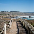 The trail at Pigeon Point Lighthouse.- Iconic Lighthouses of the West Coast