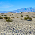 Mesquite Flat Sand Dunes, Death Valley National Park.- Sink Your Toes into Miles of Sand