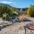 Cactus Garden at the Panamint Springs Campground.- Camping in Death Valley National Park