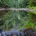 East Fork of the Winchuck River near Ludlum Campground.- Camping on the Southern Oregon Coast