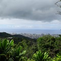Views of downtown at the first switchback on the Pu'u Ohia Trail.- Hawaii's Best Day Hikes
