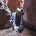 Kanarraville Falls and the iconic log ladder.- 50 Favorite Hikes in Utah