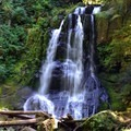 Upper Kentucky Falls.- Exploring Oregon's Coastal Waterfalls