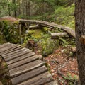 Great options on the Kill Me, Thrill Me Trail.- Mountain Biking in British Columbia
