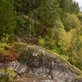 A tricky bridge on a tight corner of Kill Me Thrill Me.- Mountain Biking in British Columbia