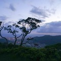 Ridge view looking into Manoa Valley from Kolowalu Trail.- O'ahu's 16 Best Hikes
