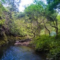 This swimming hole and open clearing along the Kulana'ahane Trail are perfect for a picnic or camping. A permit is required.- Hawaii's Best Day Hikes