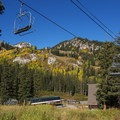 Such great autumn color in Big Cottonwood Canyon.- When and Where Fall Foliage Will Peak This Autumn
