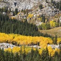 Beautiful fall colors on the Lake Mary Trail.- When and Where Fall Foliage Will Peak This Autumn
