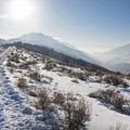 Little Mountain Snowshoe.- 5 Great Snowshoe Trails Near Salt Lake City