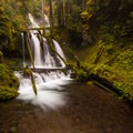A user trail leads to the lower tier of Panther Creek Falls.- Panther Creek Falls