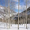 Lower Red Pine Lake in winter.- Lone Peak Wilderness