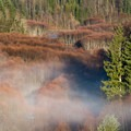 Mist over the meadow below the Mount St. Helens Sediment Dam.- Remembering Outdoor Project Contributor Aden Williamson