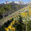 Early on the Alpine Way Trail. The stunning view from Fishook Ridge.- Best of the Sawtooths in Summer