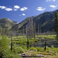 Looking upstream across the South Fork of the Payette River near Big Meadows.- Idaho's Best Backpacking Trips