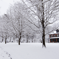 Private residence in Mills-Norrie State Park. - Hudson Valley's 12 Best Winter Adventures