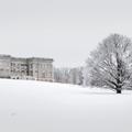 First sight of Mills Mansion.- Hudson Valley's 12 Best Winter Adventures