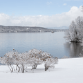 Beachfront along the Hudson River in Mills-Norrie State Park. - Hudson Valley's 12 Best Winter Adventures