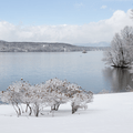 Mills-Norrie: Beachfront along the Hudson River.- Hudson Valley's 8 Best Snowshoe Adventures