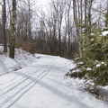 Upper Awosting Carriage Road.- Hudson Valley's 12 Best Winter Adventures