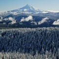 Clearing of a November snowstorm.- Larch Mountain, Sherrard Point