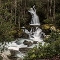 Mouse Creek Falls.- Great Smoky Mountains National Park