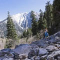 Mule Hollow Trail, Big Cottonwood Canyon.- Mount Olympus Wilderness