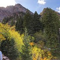 Big views on the South Fork Neff's Canyon Hike.- Mount Olympus Wilderness