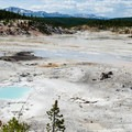 Porcelain Basin with the mountains of Montana in the background.- Norris Geyser Basin