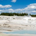 There are several pools of beautiful blue water in Porcelain Basin.- Norris Geyser Basin