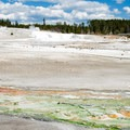 The color patterns on the ground are as much of an attraction as the geysers themselves.- Norris Geyser Basin