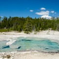 This pool looks inviting, but the water is boiling hot.- Norris Geyser Basin