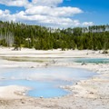 Porcelain Basin has beautiful color contrasts.- Norris Geyser Basin