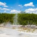 An erupting geyser.- Norris Geyser Basin