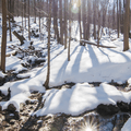 Streams across the Blue Trail of North Point. - Hudson Valley's 12 Best Winter Adventures