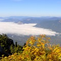 Fall colors along Mount Pilchuck Trail.- Mountain Loop Highway Itinerary