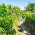 One of the many trails around Odiorne Point State Park.- 5 Reasons to Visit New Hampshire's Coast This Summer