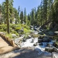 Cascade Creek along the North Rim Hike.- Yosemite National Park