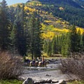 Crossing the Slate River. - 30 Spectacular Fall Adventures in Colorado