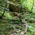 A small cave near Jackson Falls.- 10 Must-Do Hikes Near Nashville, Tennessee