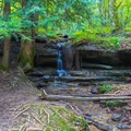 A small waterfall off-trail.- 7 Must-See Tennessee Waterfalls
