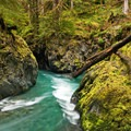 Quinault River at Pony Bridge.- 10 Amazing Day Hikes in Olympic National Park