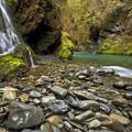 Quinault River at Pony Bridge.- Olympic Peninsula Waterfall Road Trip