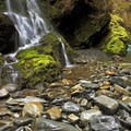 Quinault River at Pony Bridge.- The West's 100 Best Waterfalls