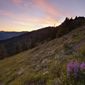 A vibrant sunset over the wildflower meadows on Hurricane Hill.- Hurricane Hill Trail
