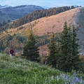 Another local enjoying the wide open spaces.- Development Threatens Bonanza Flats in Utah's Wasatch