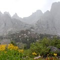 Weather settles in at the Cirque of the Towers.- Under-the-radar Wildflower Spotting