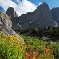 Alpine sunflower and Indian paintbrush flower in the Cirque of the Towers.- Going the Distance