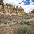 Hiking in Chalk Basin near the Owyhee Canyon.- Seven of the West's Best Multi-Day Floats