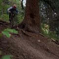 Stumpjumper/Stumpy: Roots into hard left.- Salt Lake City's 17 Best Mountain Bike Rides